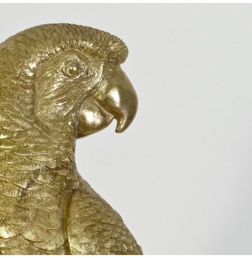 Pappagallo dorato su trespolo