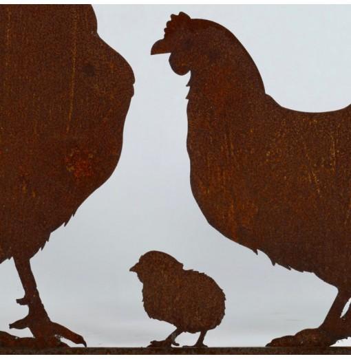 Galli, galline e pulcini su...